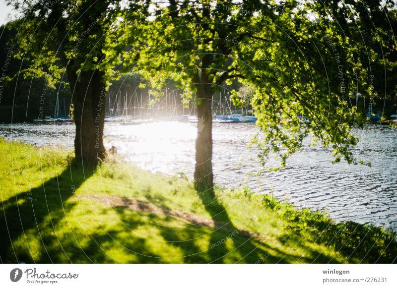 Sommerlicht Natur Wasser grün schön Baum Pflanze Erholung Landschaft Umwelt Gras Frühling See Park Stimmung Wasserfahrzeug