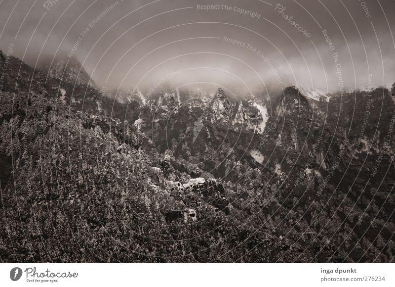 Düsterberg Himmel Natur Ferien & Urlaub & Reisen Baum Pflanze Wolken Landschaft Umwelt dunkel Berge u. Gebirge Felsen Wetter Klima Nebel Tourismus Abenteuer