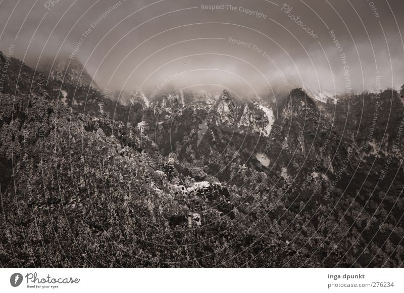 Düsterberg Umwelt Natur Landschaft Pflanze Urelemente Himmel Wolken Gewitterwolken Klima Wetter schlechtes Wetter Unwetter Nebel Baum Felsen Berge u. Gebirge