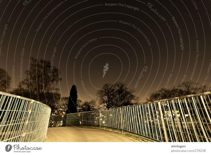 Die Brücken der Nacht Himmel Stadt Baum schwarz Horizont braun gehen gold Stern Brücke Bauwerk Wolkenloser Himmel Personenverkehr Nachthimmel Fußgänger Sternenhimmel