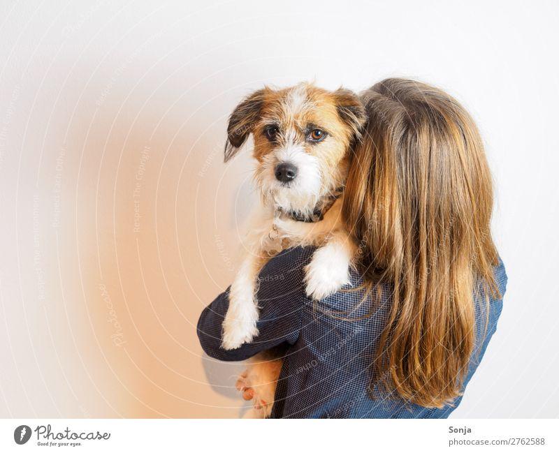 Hund Auf dem Arm einer jungen Frau Junge Frau Jugendliche 1 Mensch 18-30 Jahre Erwachsene rothaarig langhaarig Tier Haustier Tiergesicht Pfote Zusammensein