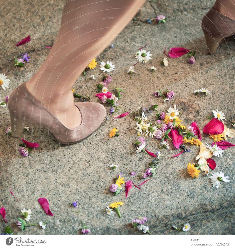 Zweites Blütenstandbein Beine Fuß Feste & Feiern Schuhe laufen Hochzeit Dekoration & Verzierung Boden Bodenbelag Romantik Symbole & Metaphern Kitsch Tradition