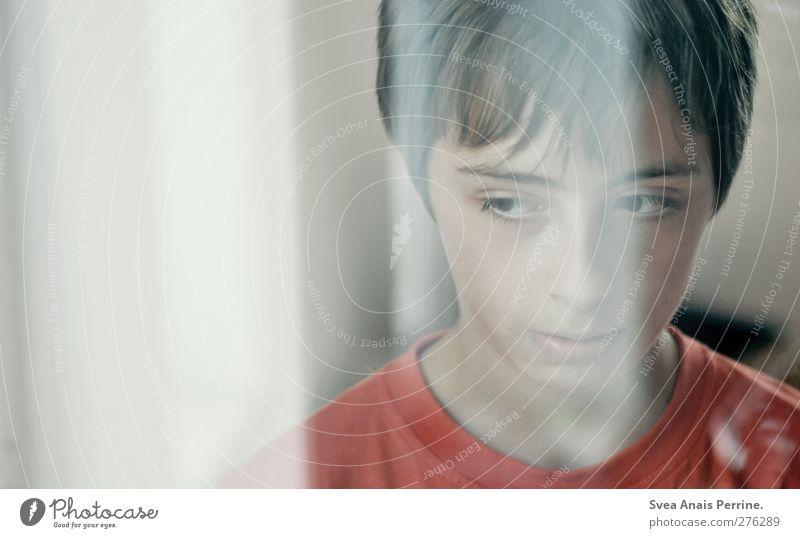1100. Junge Kopf Haare & Frisuren Gesicht Mensch 8-13 Jahre Kind Kindheit träumen Traurigkeit Gefühle Reflexion & Spiegelung Farbfoto Gedeckte Farben