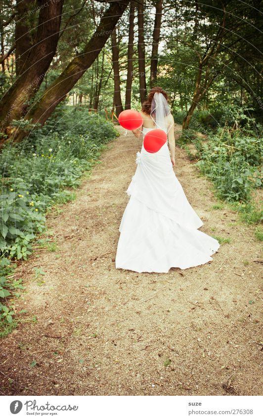 Doppelherz Mensch Frau Natur Jugendliche grün schön Sommer Baum rot Erwachsene Wald Landschaft Umwelt feminin Wege & Pfade Feste & Feiern