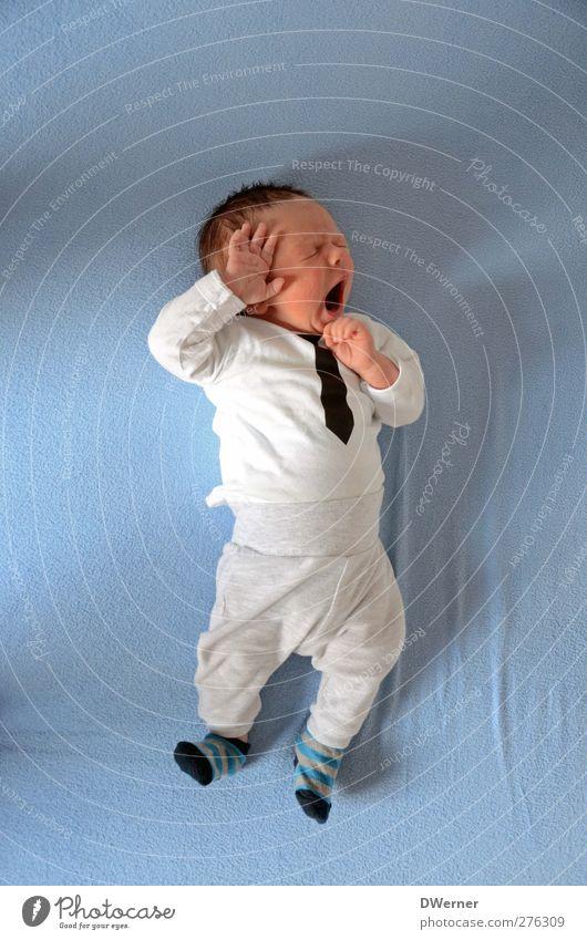 Hauptsache die Krawatte sitzt :-) Mensch Kind blau schön Erholung Leben Gefühle Glück liegen Zufriedenheit Baby schlafen Coolness Lächeln T-Shirt genießen