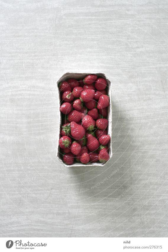 Erdbeeren auf Esstisch Lebensmittel Frucht Ernährung Bioprodukte frisch Gesundheit lecker süß rot Schalen & Schüsseln grau Geometrie Rechteck Rahmen Farbfoto
