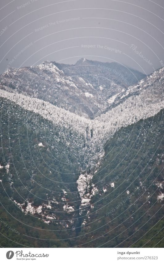 Schneetal Umwelt Natur Landschaft Pflanze Winter schlechtes Wetter Eis Frost Baum Wald Schneefallgrenze Berge u. Gebirge Schlucht China Yunnan kalt Klima