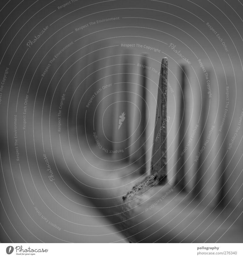 überwindbares Hinderniss? Zaun Abenteuer Geländer Spitze stachelig gefährlich bedrohlich Barriere Vorsichtsmaßnahme rund Warnung Respekt Schwarzweißfoto