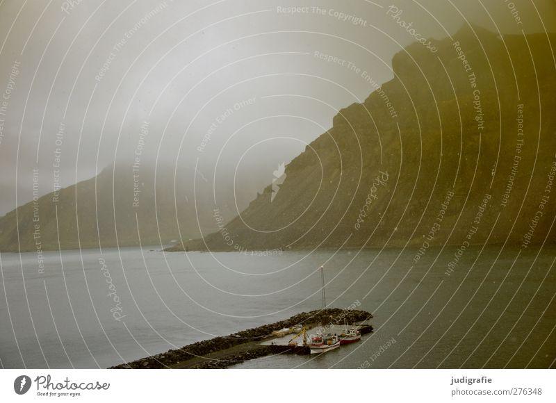 Island Umwelt Natur Landschaft Wolken Klima Wetter schlechtes Wetter Schneefall Felsen Berge u. Gebirge Fjord Westfjord Hafen Schifffahrt Fischerboot bedrohlich