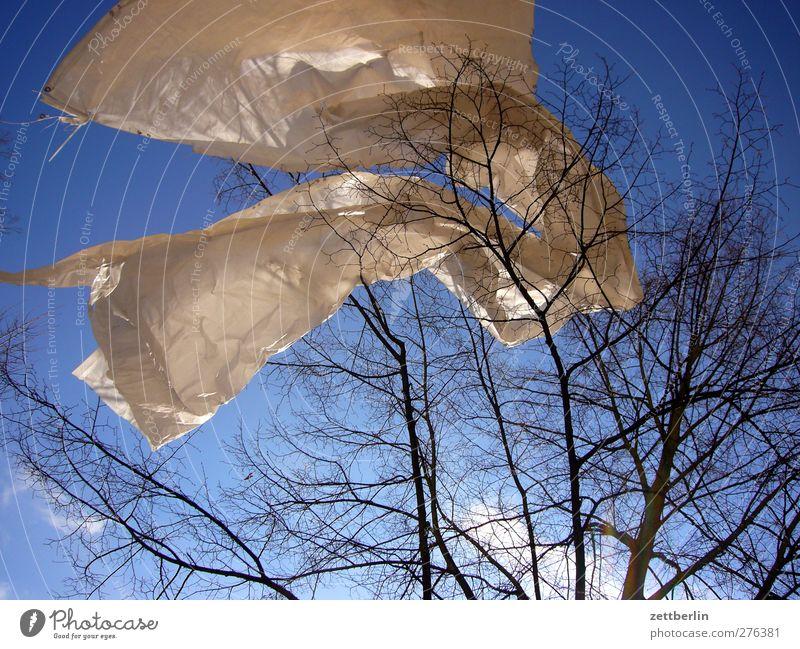 Folie im Baum Himmel Natur schön Baum Wolken Winter Landschaft Umwelt Frühling Wetter Wind Klima Schönes Wetter gut Kunststoff gefangen
