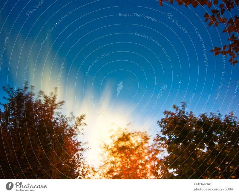 60 Sekunden Himmel Natur Sommer Baum Wolken Umwelt dunkel Garten Park Wetter außergewöhnlich Klima Stern Schönes Wetter Klimawandel Nachthimmel