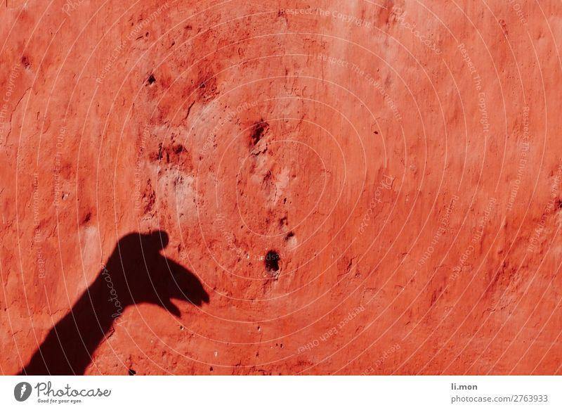 red_1 Schattenspiel Ferien & Urlaub & Reisen Städtereise Haus Hausbau Renovieren Arme Hand Kunst Gemälde Architektur Theaterschauspiel Sonnenlicht Sommer Ruine