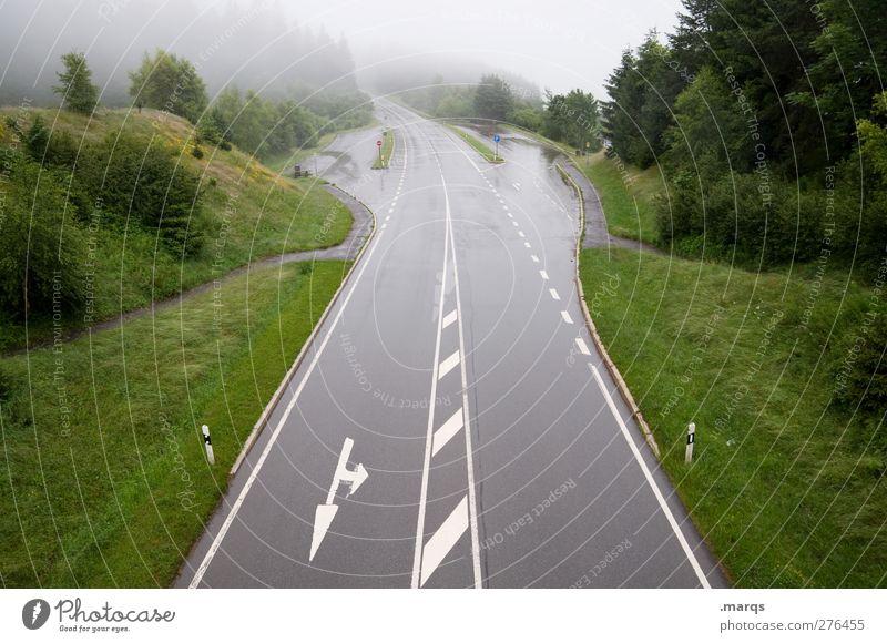Ausfahrt Natur Ferien & Urlaub & Reisen Landschaft Straße Wege & Pfade Linie Nebel Schilder & Markierungen Beginn Verkehr Sicherheit Zeichen Pfeil Unwetter