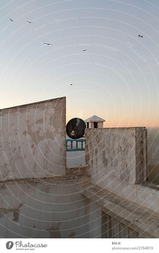 Über die Mauern l Fernweh Himmel Ferien & Urlaub & Reisen Haus Ferne Architektur Wand Gebäude Tourismus Stein Fassade fliegen Ausflug Horizont Aussicht