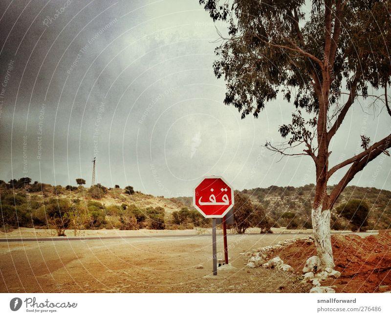 stop! Abenteuer Sommer Erde Sand Gewitterwolken Wärme Baum Zeichen Schilder & Markierungen Hinweisschild Warnschild Verkehrszeichen heiß Wahrheit authentisch