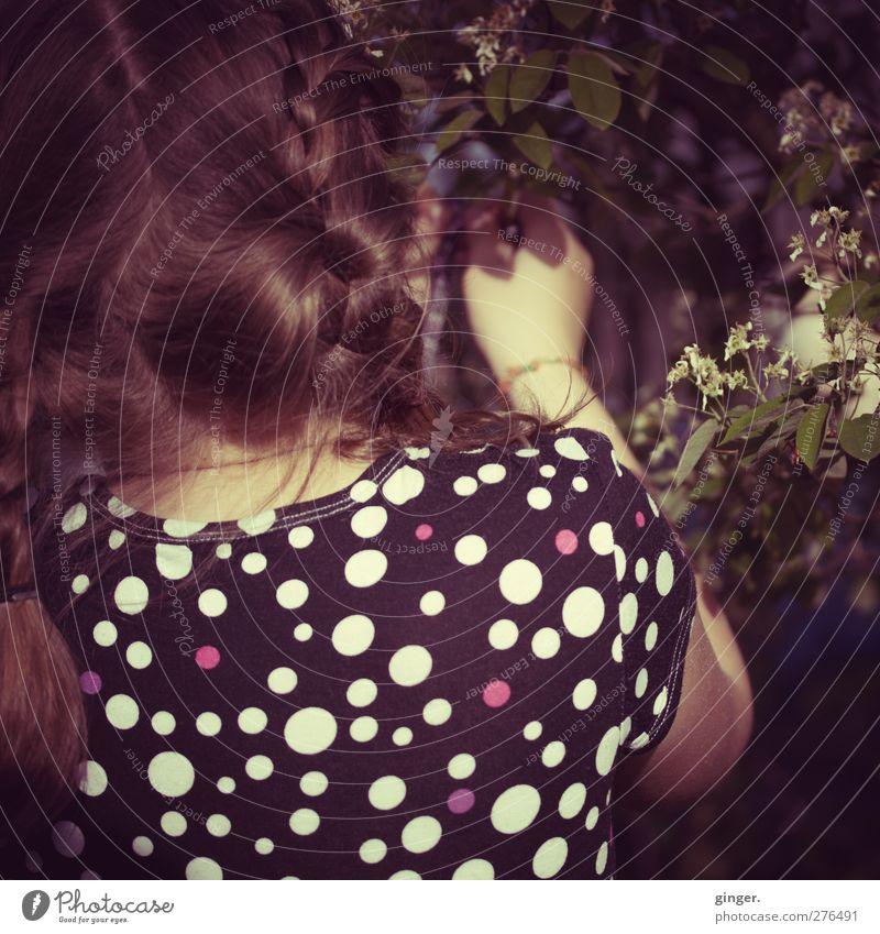 Hiddensee | Pünktchen pflückt Blümchen Kind schön Blume Mädchen Blatt Rücken Kindheit einzeln Kleid entdecken brünett Fleck Bildausschnitt Anschnitt anonym Zopf