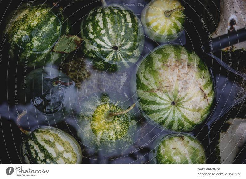 Gechillte Bio Wassermelonen Frucht Dessert Süßwaren Ernährung Bioprodukte Vegetarische Ernährung Diät Gesunde Ernährung Sommer Natur Pflanze frisch süß