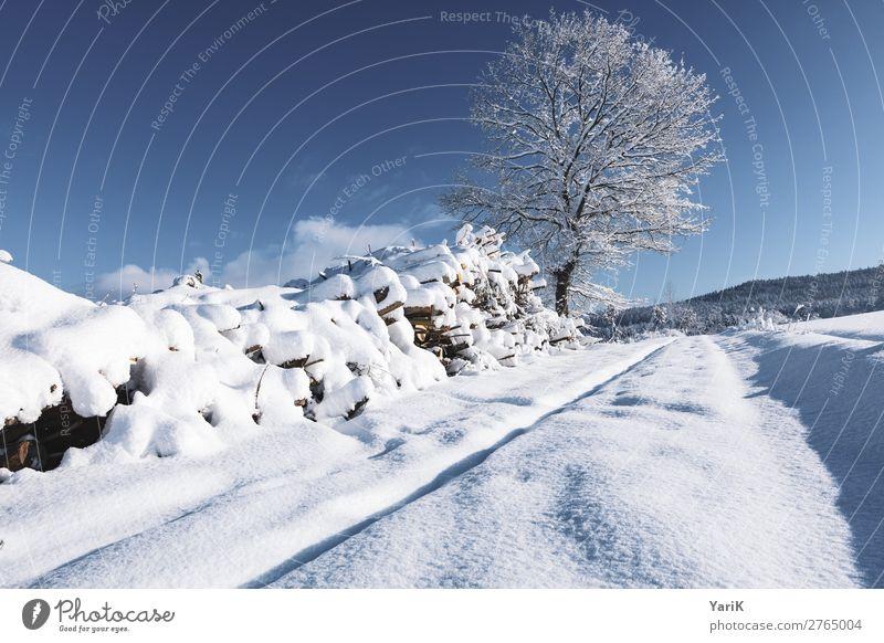 winter way Natur Landschaft Himmel Sonnenlicht Winter Klima Klimawandel Wetter Schönes Wetter Eis Frost Schnee Feld kalt blau Blauer Himmel weiß Bayern