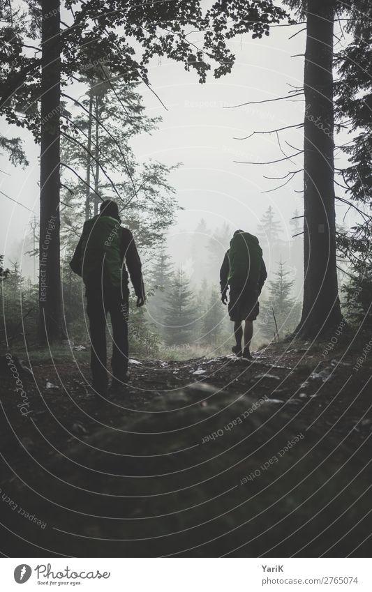 Wandertag 12Tausender 10 Mensch Ferien & Urlaub & Reisen Natur Mann Sommer Baum Wald Ferne dunkel Erwachsene Herbst Frühling Tourismus Freiheit Freundschaft