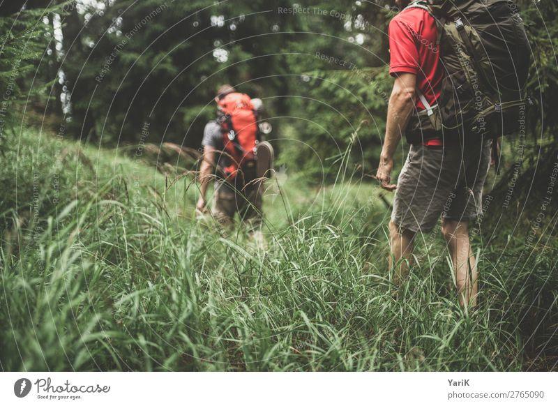 Wandertag 12Tausender 4 Mensch Ferien & Urlaub & Reisen Natur Mann Sommer grün Wald Ferne Erwachsene Herbst Frühling Gras Tourismus Freiheit Freundschaft
