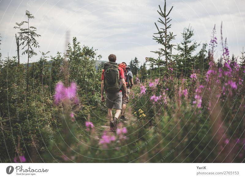 Wandertag 12Tausender 1 Ferien & Urlaub & Reisen Tourismus Ausflug Abenteuer Ferne Freiheit Camping Sommer Sommerurlaub wandern maskulin Mann Erwachsene