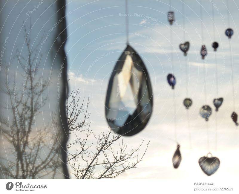 hanging around Himmel blau Baum Freude Fenster hell Stimmung Glas Herz glänzend Design Fröhlichkeit leuchten ästhetisch Dekoration & Verzierung Häusliches Leben