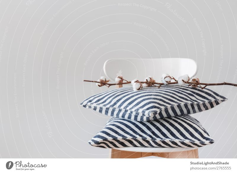 Gestreifte Kissen und Baumwollzweig auf einem Stuhl elegant Stil Design schön Innenarchitektur Dekoration & Verzierung Möbel Pflanze Blume Architektur Stoff