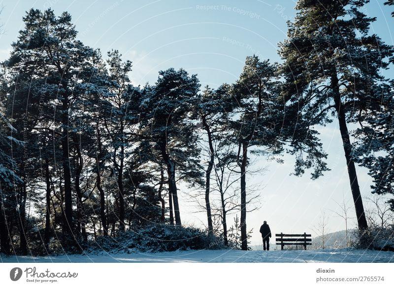 Ausblick Ferien & Urlaub & Reisen Ausflug Abenteuer Ferne Freiheit Winter Berge u. Gebirge wandern 1 Mensch 30-45 Jahre Erwachsene Umwelt Natur Landschaft