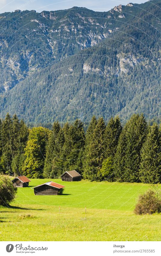 Landschaftsansicht Bayerische Alpen, Deutschland, Europa schön Ferien & Urlaub & Reisen Tourismus Sommer Berge u. Gebirge wandern Natur Himmel Wolken Baum Blume