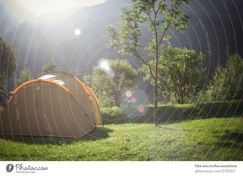 guuter morgen! Natur Ferien & Urlaub & Reisen Baum Sommer Ferne Wiese Berge u. Gebirge Freiheit Zufriedenheit Freizeit & Hobby wandern Tourismus Ausflug Abenteuer Alpen Lebensfreude