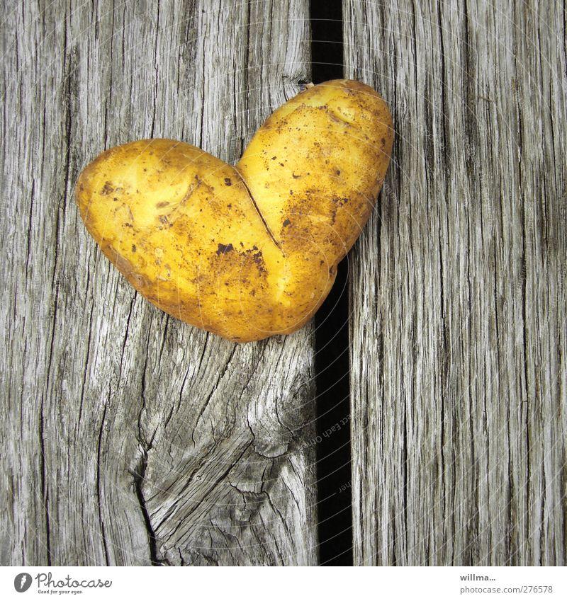 herz aus kartoffel zum valentinstag gelb Liebe Gesunde Ernährung grau Holz Gesundheit Lebensmittel Geburtstag Herz Zeichen Symbole & Metaphern Gemüse