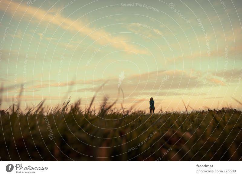 calm Mensch Himmel Natur Einsamkeit Wolken ruhig Erholung Landschaft Umwelt Wiese Herbst träumen Horizont Schönes Wetter beobachten Romantik