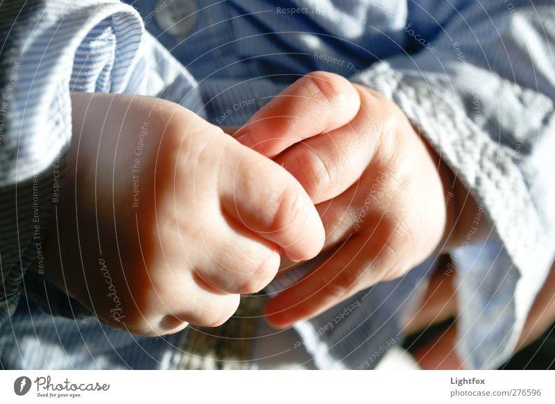 Kinderhände Mensch blau Hand Mädchen Erwachsene Bewegung Junge Gesundheit maskulin Kindheit Haut Baby Finger genießen berühren