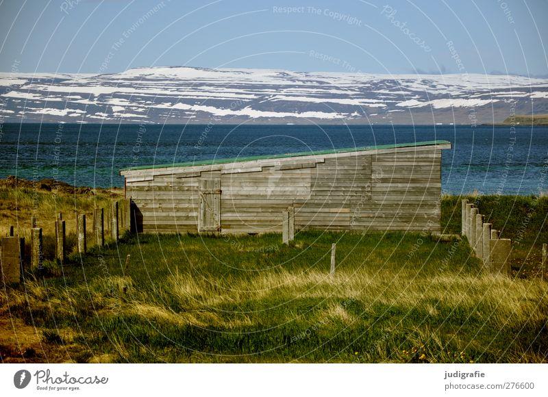 Island Umwelt Natur Landschaft Pflanze Wasser Himmel Klima Hügel Berge u. Gebirge Schneebedeckte Gipfel Fjord Westfjord Haus Hütte Gebäude natürlich Idylle