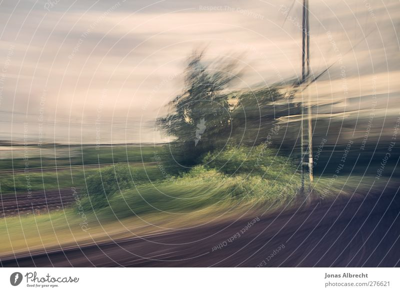 Es zieht mich in die Weite Natur Baum Gras Kunst außergewöhnlich Verkehr Geschwindigkeit ästhetisch Eisenbahn Sträucher Gleise Surrealismus S-Bahn Bahnfahren Öffentlicher Personennahverkehr Schienenverkehr