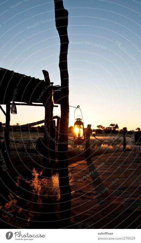 Solarlicht Natur Sonne Landschaft Gras leuchten Sträucher Wüste Laterne Lichtspiel Steppe Lichtstrahl Lichtschein Namibia Lichteinfall Laternenpfahl Savanne