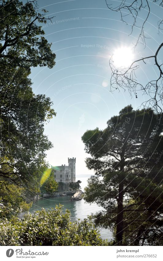 Meerchenhaft Wolkenloser Himmel Sonne Pflanze Baum Park Küste Bucht Italien Burg oder Schloss Gebäude Sehenswürdigkeit Denkmal leuchten ästhetisch historisch