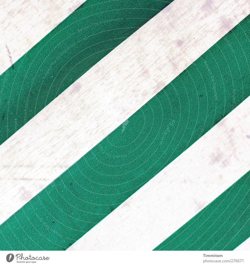 Grünstreifen Markise nass grün weiß Schutz Streifen schützend feucht dreckig Detailaufnahme Bildausschnitt Farbfoto Außenaufnahme Menschenleer Tag