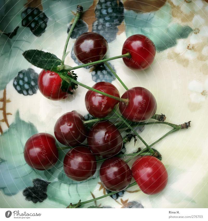 Kirschen aus Nachbar's Garten Sommer Blatt Gesundheit Frucht natürlich frisch süß Geschirr lecker Stillleben Schalen & Schüsseln Vitamin Porzellanschalen