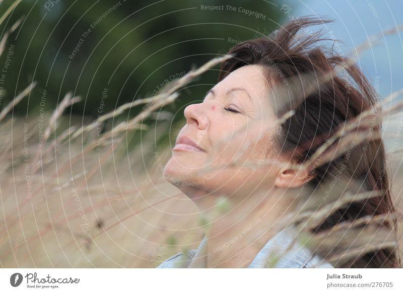 Pause Mensch Frau blau grün schön Sommer Erwachsene Wiese feminin Gras Haare & Frisuren Kopf braun Kraft Wind frei