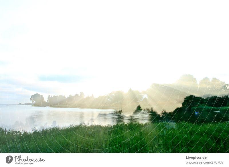Sonnenlicht in Lauterbach Umwelt Natur Landschaft Wasser Himmel Wolken Sonnenaufgang Sonnenuntergang Sommer Wetter Schönes Wetter Pflanze Baum Gras Sträucher