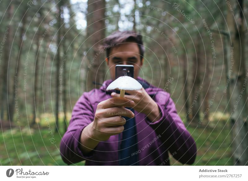 Mann, der ein Foto von einem Pilz macht. Sammeln geschnitten Tourismus natürlich Umwelt Jahreszeiten Pflanze Gesundheit Herbst abholen frisch Wald Moos pflücken