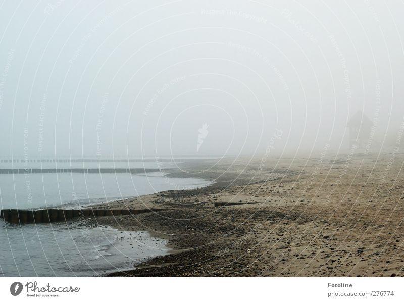 Was sich im Nebel wohl verbirgt? Natur Landschaft Urelemente Erde Sand Wasser Himmel Herbst Küste Strand Ostsee Meer bedrohlich dunkel nass natürlich grau