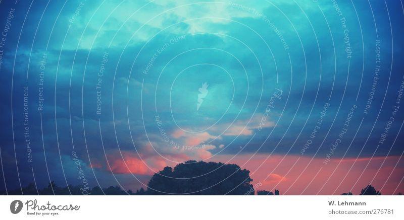 BlauroterHimmelamAbend Natur Himmel (Jenseits) Wald Umwelt Gefühle Angst Klima Unwetter schlechtes Wetter