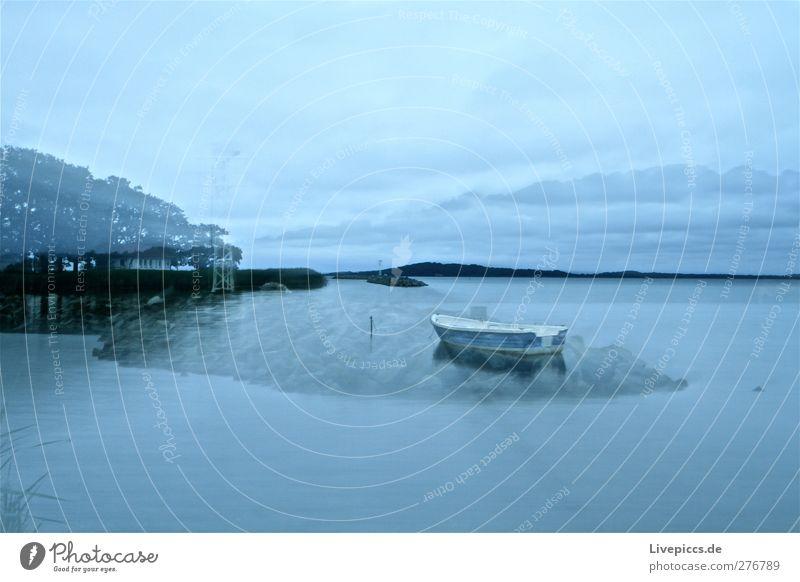 Blaue Stunden auf Rügen Himmel Natur blau Wasser weiß Baum Sommer Pflanze Strand Wolken ruhig schwarz Landschaft Küste Insel Schönes Wetter