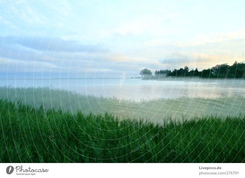 Ich glaube es dämmert jawohl. Ferien & Urlaub & Reisen Ausflug Sommerurlaub Insel Natur Landschaft Pflanze Luft Wasser Himmel Wolken Sonnenaufgang