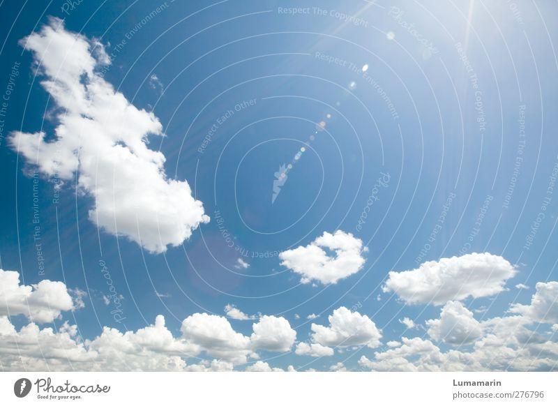 summer is champion Himmel schön Sommer Wolken Erholung Ferne oben Freiheit Luft hell Stimmung Zufriedenheit Kraft Klima natürlich hoch