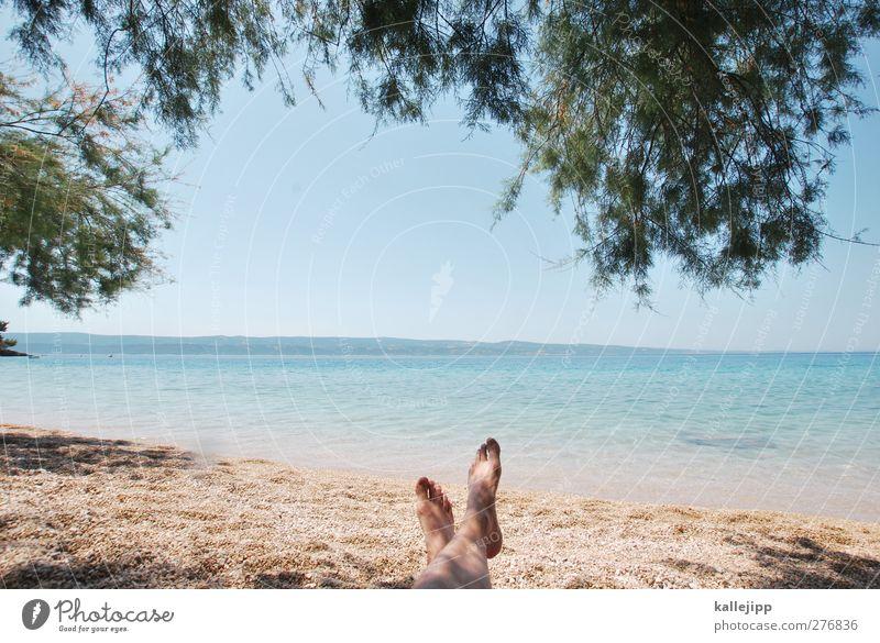 mala luka Mensch Natur Wasser Ferien & Urlaub & Reisen Sommer Sonne Meer Strand Erwachsene Ferne Umwelt Freiheit Küste Beine Fuß liegen