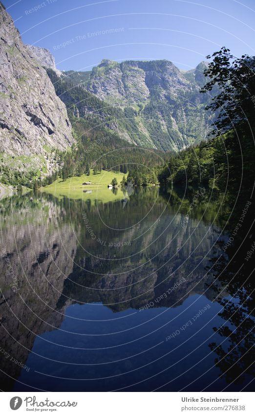 Obersee Himmel Natur Baum Sommer Pflanze ruhig Landschaft Umwelt Berge u. Gebirge Gras See Felsen natürlich nass ästhetisch Sträucher