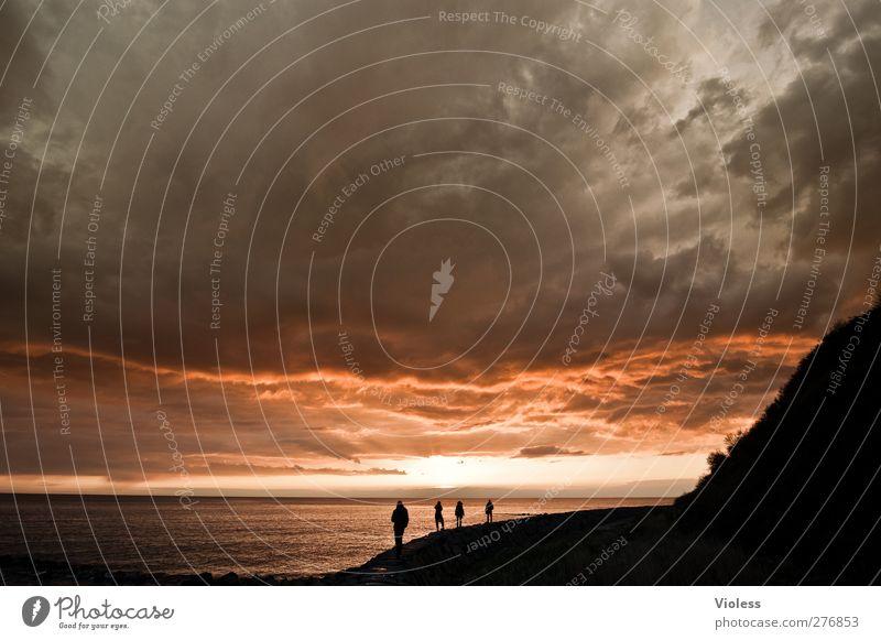 Hiddensee   ..die Gefährten Himmel Wolken Sonnenaufgang Sonnenuntergang Frühling Wetter Küste Ostsee Insel entdecken Erholung außergewöhnlich bedrohlich